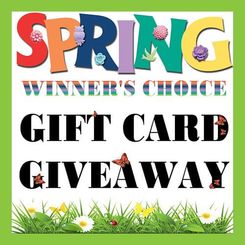Have you entered the Sweepstakes Fanatics Spring Gift Card Giveaway yet?